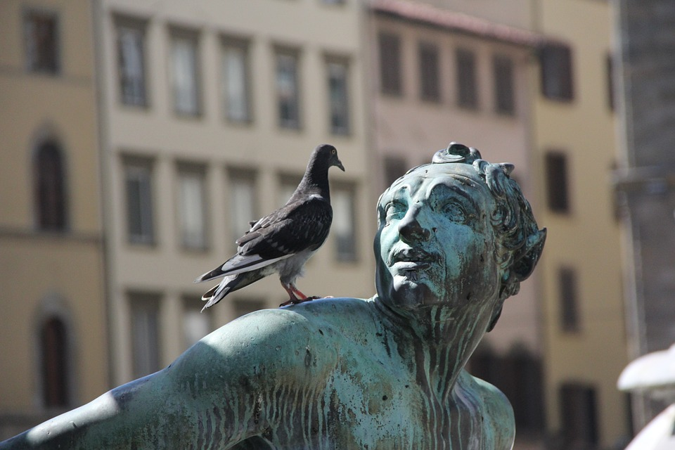 statue-185435_960_720.jpg